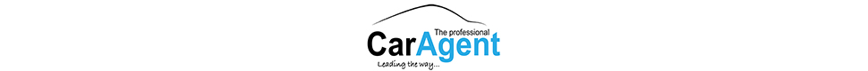 The Professional Car Agents Ltd