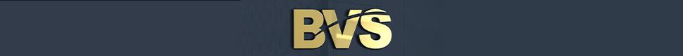 Braintree Car And Van Sales